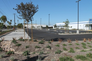 Stormwater Retention
